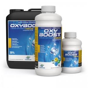 Protocole eau oxygénée pour les maladies suivantes
