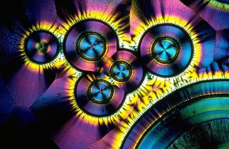 Cristaux de Vitamine C en microscopie à lumière polarisée.